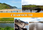 dt22-charmouth